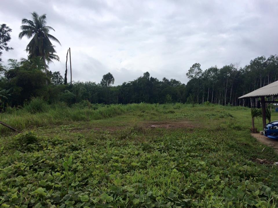 Land from main road