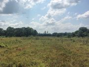 Land - Looking across